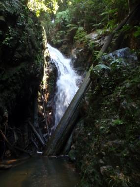 Pelepah Waterfall Trekking
